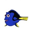 How to Draw Dory