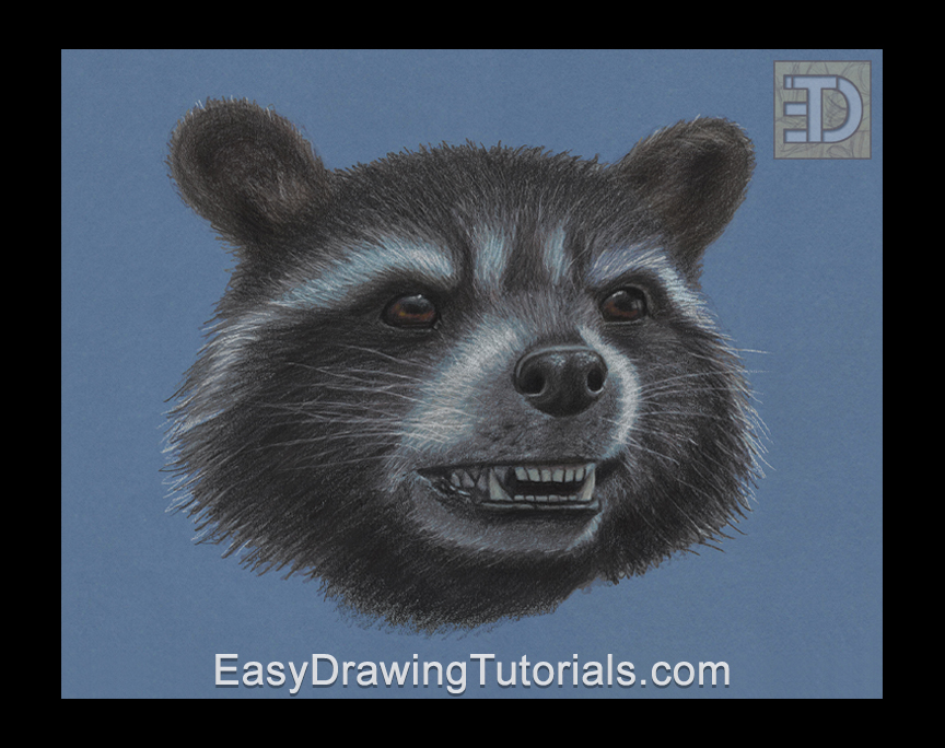 Rocket Raccoon Special Portrait Drawing