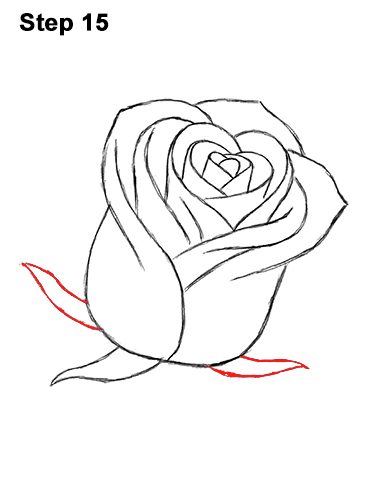 How To Draw Red Rose 15