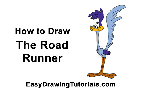 How to Draw Road Runner Looney Tunes