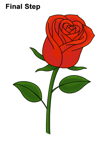 How to Draw Red Rose