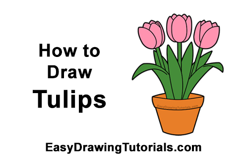 How to Draw Cartoon Pink Flowers Tulips